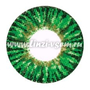 Цветные линзы Dreamcon Elegance Green Фото 3